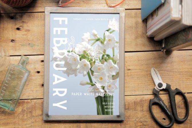 季節のポスター 2月のお花と花言葉