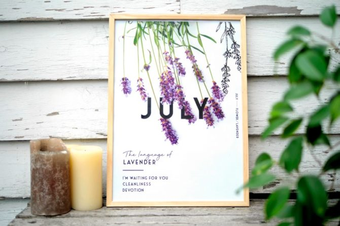 季節のポスター 7月のお花と花言葉