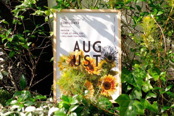 季節のポスター 8月のお花と花言葉
