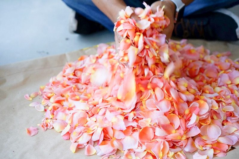 S【SOLD OUT】#週末野心学 6/14開講「花の力でお手当はじめ。身体に嬉しい、ばらジャム仕込み講習」 5