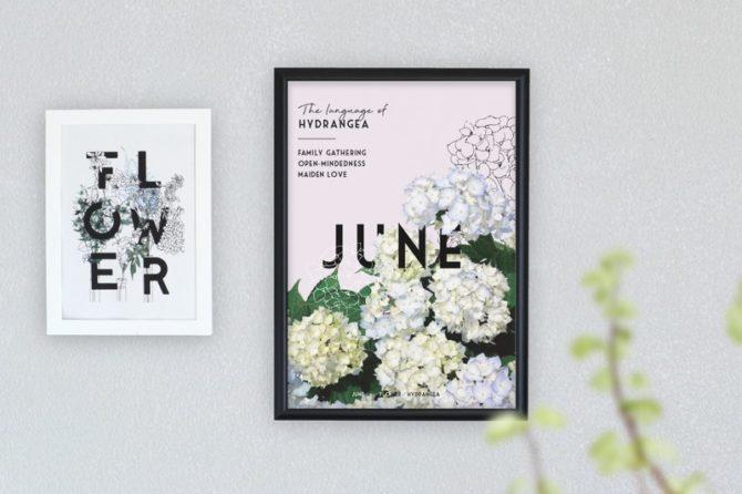 季節のポスター 6月のお花と花言葉
