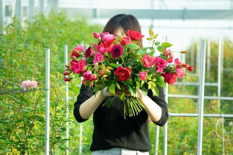 【SOLD OUT】#週末野心学|6/14開講「花の力でお手当はじめ。身体に嬉しい、ばらジャム仕込み講習」 3